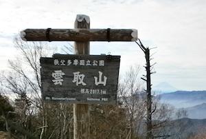 Kumotori_saitama