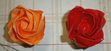 Rose161101